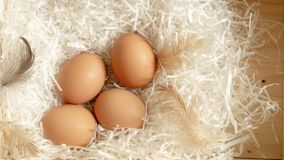 Four brown hen eggs and chicken feather on white paper in wooden basket, top view photo royalty free stock photography