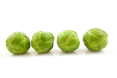 Four Brussels sprouts. In a row over white background Royalty Free Stock Images