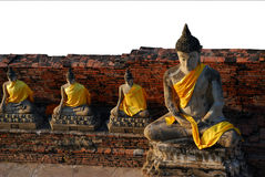 Four Buddha Stock Photography