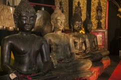 Eternal meditation for soul and spirit. Four buddha statues in a meditation position: an expression of a culture that has always been oriented towards in eternal stock images