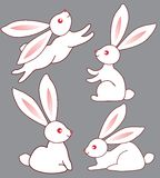 Four bunnies for design Royalty Free Stock Image