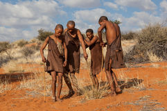 Four bushmen dancing. In kalahari desert in Namibia, they are the indigenous people of Southern Africa Royalty Free Stock Photography