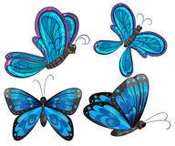 Four butterflies Royalty Free Stock Photo