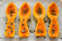 Four butternut squash pieces with pumpkin seeds on white paper Royalty Free Stock Photography
