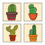 Four cactus in a pot. Illustration of four cactus in a pot, hand drawn style vector illustration