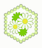 Four camomiles in a hexagon from camomiles. On a white background Stock Illustration