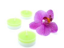 Four candles with a pink orchid Royalty Free Stock Photo