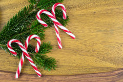 Four candy canes and pine branches Stock Photos