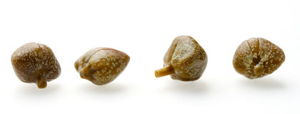 Free Four Capers In A Row Stock Photos - 26380113