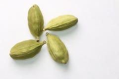 Four cardamom seeds close-up. Macro. Royalty Free Stock Image