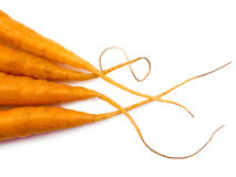 Four Carrot Tails Royalty Free Stock Photo
