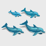 Four cartoon Dolphin, character for your design Royalty Free Stock Photo