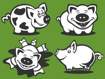 Four cartoon piggies Royalty Free Stock Photos