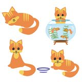 Four cats on white background. Four ginger cats on white background Royalty Free Stock Images
