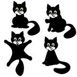 Four cats on white background Royalty Free Stock Photos