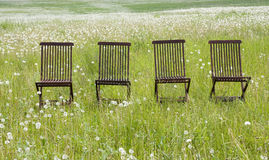 Four chairs. In the grassland Stock Images