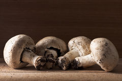 Four Champignon Mushrooms Royalty Free Stock Photos
