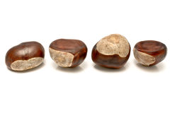 Four chestnuts Royalty Free Stock Photography