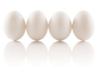 Four chicken eggs. Four isolated eggs in a line Stock Images