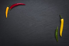 Four chili peppers  on slate stone. Stock Image