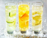 Four chilled citrus beverages. With sliced lemon, orange and lime in white spirits for a refreshing summer cocktail served in long glasses stock photography