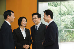 Four Chinese business colleagues Royalty Free Stock Image