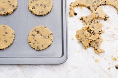 Four chocolate chip cookies on a baking tray Royalty Free Stock Images