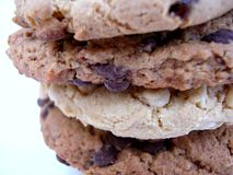 Four chocolate cookies Royalty Free Stock Photo