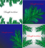 Four christmas backgrounds. With pine branches Royalty Free Stock Photography
