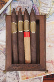 Four cigars in a box. On a colorful background Stock Photo