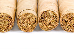 Four cigars Stock Image