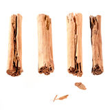 Four cinnamon sticks isolated on white. High angled cinnamon sticks on white background Stock Images