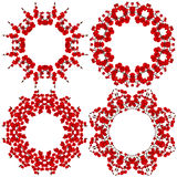 Four circular pattern. Flowers, red orchid on white background. Stock Photos