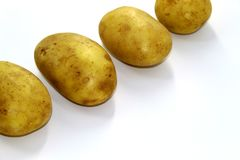 Four clean young potatoes on white background royalty free stock images