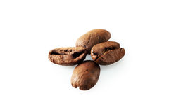 Four coffee beans on white background. Four roasted coffee beans on white background stock photos