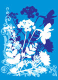 Four color blue flower background Royalty Free Stock Photo
