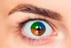 Four color eye Stock Photography