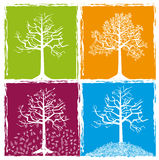 Four color seasons Royalty Free Stock Image