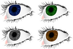 Four color woman eyes Stock Photo