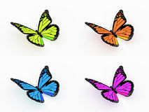 Four colored butterfly isolated on white Stock Photo