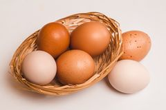 Four colored chicken eggs in a wicker brown basket and two eggs stock photo