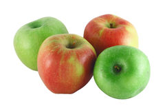Four colorful apples. Four red and green apples isolated on white background Royalty Free Stock Photos