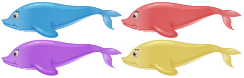 Four colorful dolphins Stock Photography