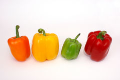 Four colorful paprica vegetables. Isolated on white background Royalty Free Stock Image