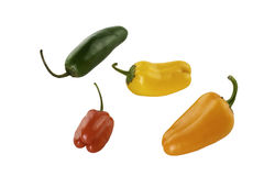 Four Colorful Peppers. Four colorful sweet and jalapeno peppers Royalty Free Stock Photos