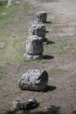 Four columns of the ruins of Paestum Stock Photos