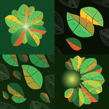 Four compositions with abstract leaves Stock Photos