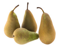 Four conference pears Stock Photography