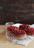 Four cranberry upside down cakes Stock Photography