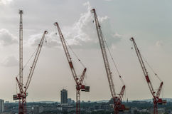 Four cranes Stock Photo